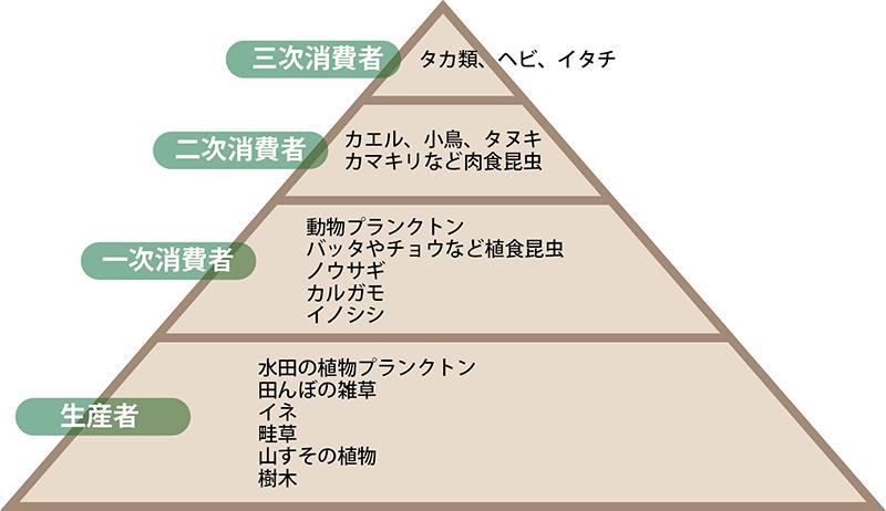 谷戸田のピラミッド