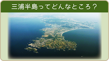三浦半島ってどんなところ?