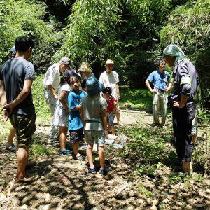 湘南国際村めぐりの森