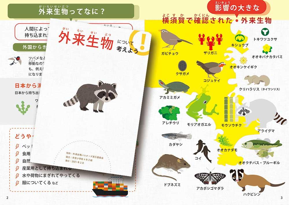 23. (冊子)外来生物について
